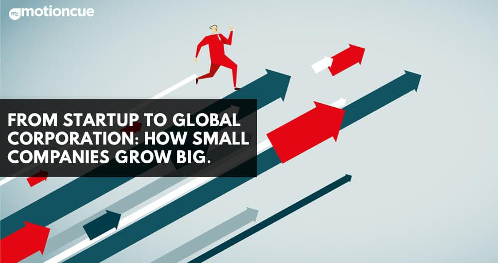 From Startup To Global Corporation: How Small Companies Grow Big.